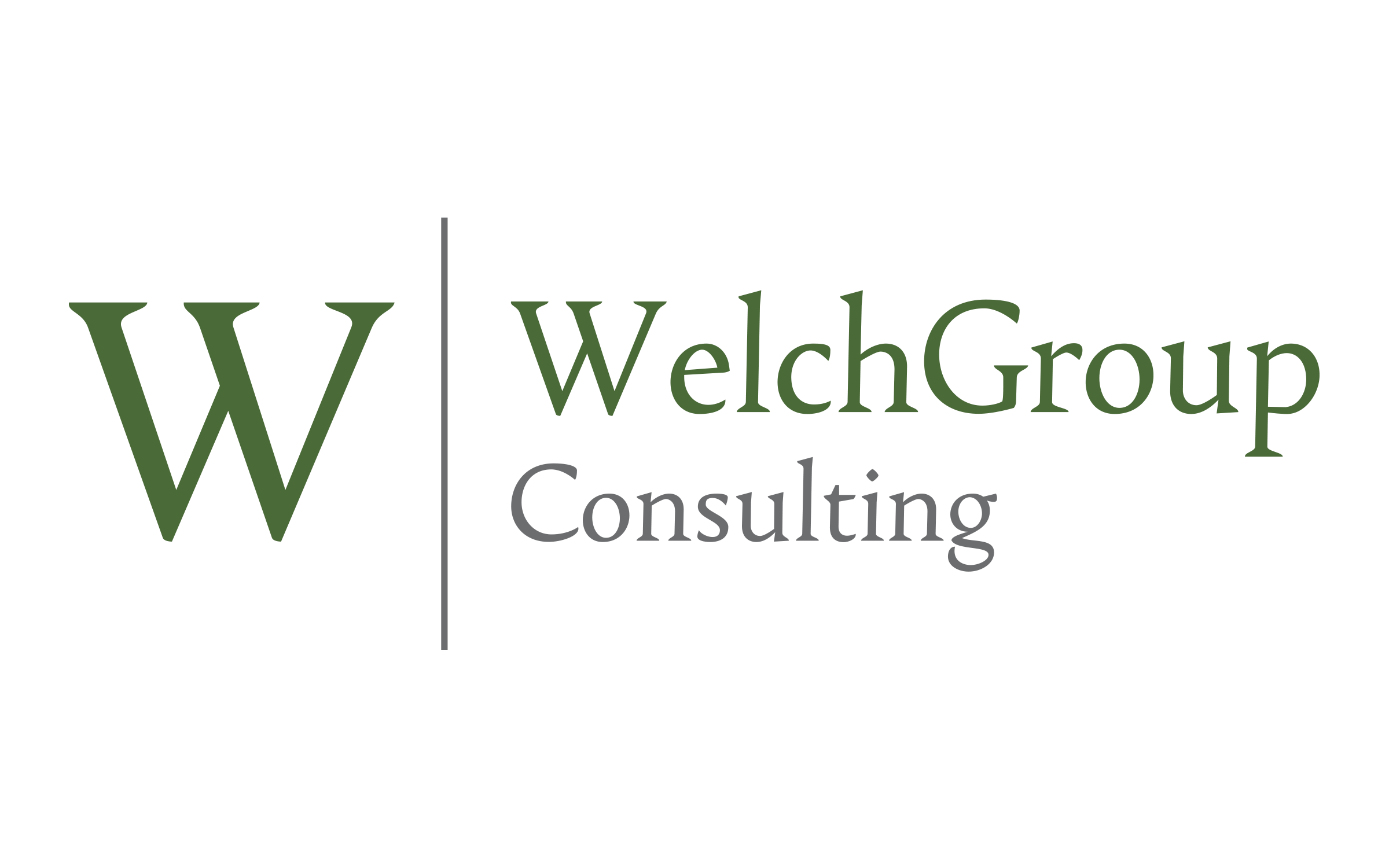 WelchGroup Consulting
